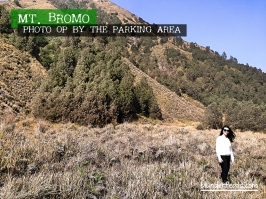 mt-bromo-photo-op-near-parking-area-1