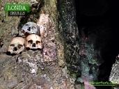 londa-skulls