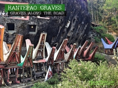 rantepao-graves-1