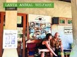Koh Lanta, Thailand - Lanta Animal Welfare Lobby